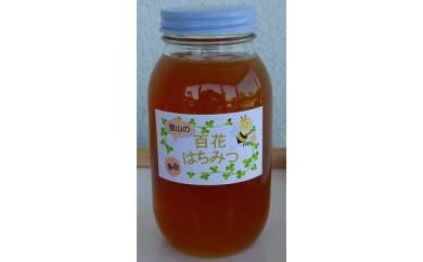 【159】里山の百花蜂蜜