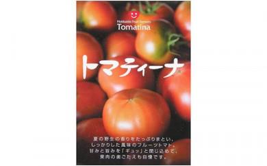 お得!フルーツトマト「トマティーナ 特選品」20~30玉セット