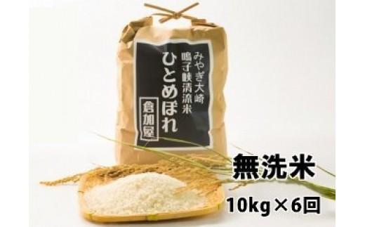 (03715)【無洗米10kg×6回】鳴子峡清流米 ひとめぼれ【2017年産】