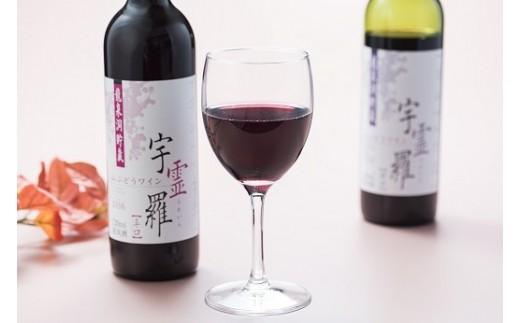 山ぶどうワイン「宇霊羅」2016 辛口