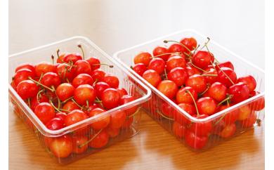 【受付終了】2018年受付開始☆果物の郷 中山町からお届けします!さくらんぼ「佐藤錦」