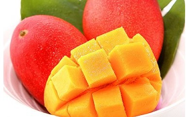 【予約受付中】<明宝>冷凍マンゴー 2個入(約1kg)