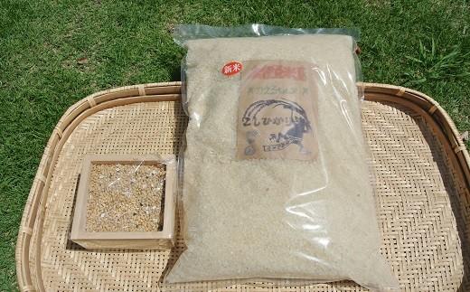 [Ga-01]湯の花 精米したてのお米5kg半年分