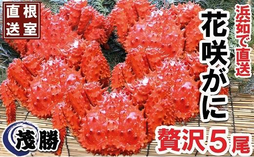 CB-05004 【北海道根室産】花咲ガニセット500g前後×5尾[358647]