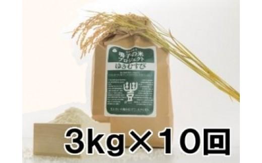 (03716)【3kg×10回】鳴子の米プロジェクト ゆきむすび くい掛け生産【2017年産】