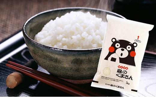 [№5636-0010]熊本・人吉球磨産 森のくまさん
