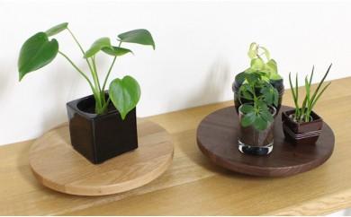 Korokoro Flower planter Set