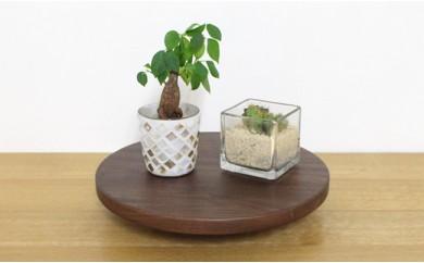 Korokoro Flower planter WN