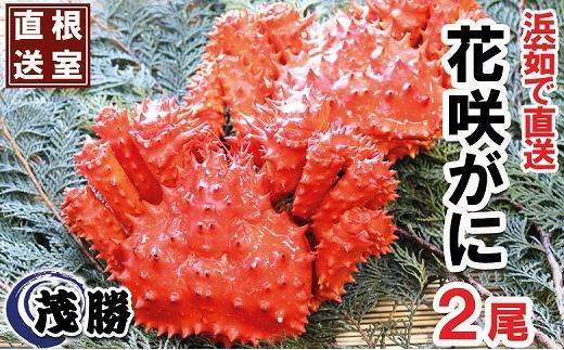 CD-05002 花咲ガニ2尾セット(計800g~1kg)[405500]