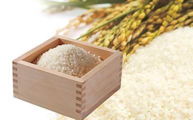 南大隅町よりお届け!ミネラル豊富なおいしいお米10㎏(ひのひかり)