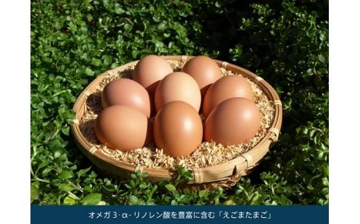 平飼い・有精卵 【えごまたまご】 40個入り