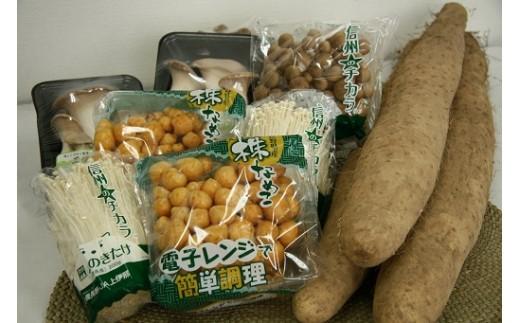 28 きのこ・長芋セット