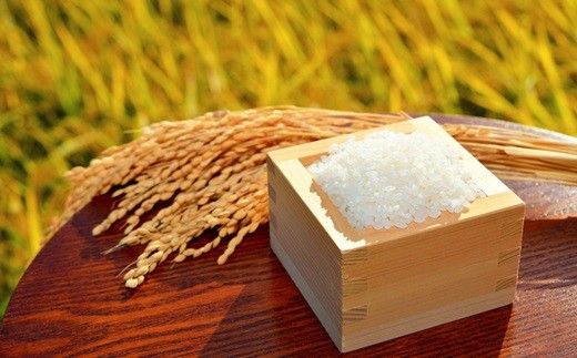 飯豊米 つや姫 10kg