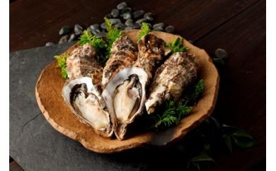 D004-C2018年発送 海峡育ち「知内産 殻付牡蠣 12個入り」<上磯郡漁業協同組合>【60pt】