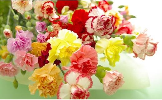 P604 母の日カーネーション花束セット【400pt】