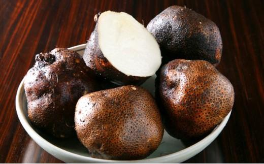[№5661-0094]大和万葉の里「山の芋」約1.2kg