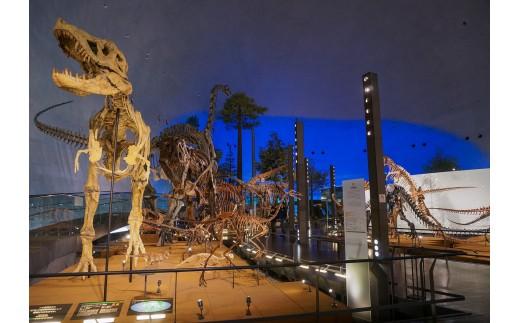県立恐竜博物館【常設展観覧券一般2名と小・中学生2名】(寄付の使い道に「恐竜博物館の魅力向上応援」を選択された県外在住の方のみ)