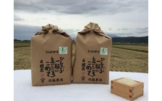 NB388 平成29年産 有機栽培米コシヒカリ6kg+おまけ
