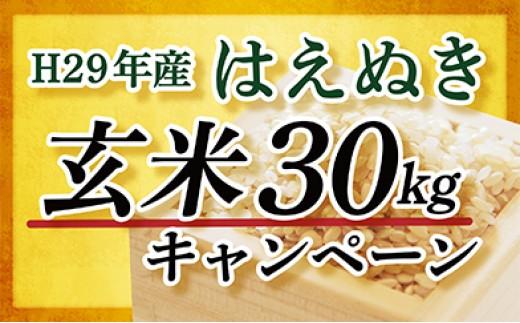 030-K001【玄米】山形県最上町産はえぬき30kg
