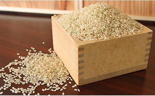 F0M09・平成30年産米【平成31年3月発送】西川町産特別栽培米つや姫玄米30kg
