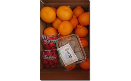 D-23 丸亀産季節の果物セット