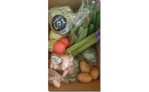 C-23 丸亀産季節のお野菜セット