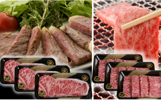 30-D-14 (JA)鹿児島黒牛(5等級)サーロインステーキ(3枚)・焼肉セット