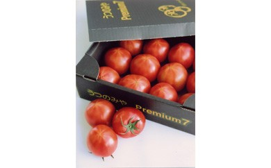 ◇☆JAうつのみや産地直送 期間限定品 トマト プレミアム7(平均糖度7度以上)