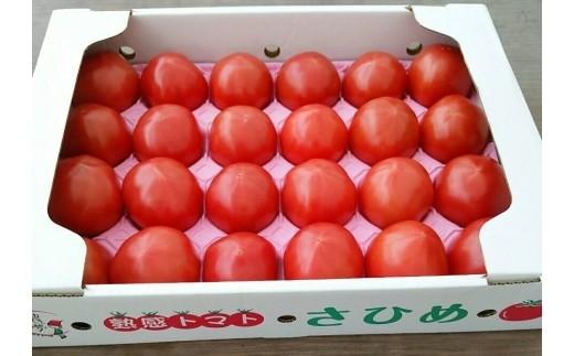 A-185 合同会社農夢の「熟感トマトさひめ」24玉【1pt】