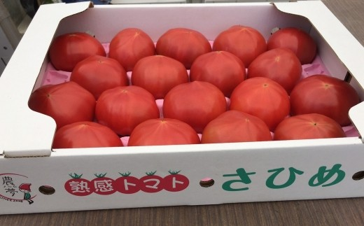 A-183 合同会社農夢の「熟感トマトさひめ」18玉【1pt】
