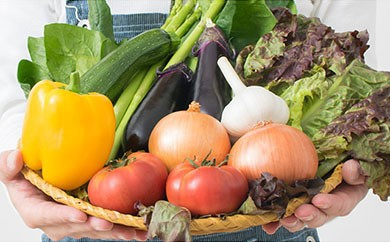 「旬」を豊前からお届け!新鮮野菜セット