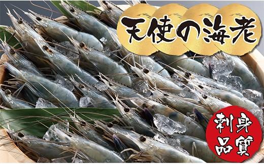 D01-20 世界最高クオリティー!お刺身品質「天使の海老」1kg(生食用)