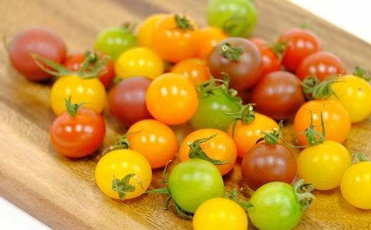 【148】 ほんとうにおいしい「生きている野菜」ミニトマト一ヶ月定期配達セット2