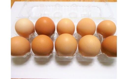 A-293 自然鶏卵【1pt】