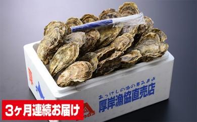 [№5863-0155]連続3ヶ月お届け 厚岸産殻付き牡蠣Lサイズ20個入