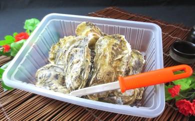 [№5863-0183]レンジで楽チン蒸し牡蠣(2パックセット)