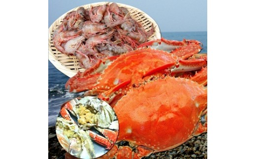 C5.豊前海特大わたり蟹と小エビセット