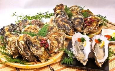 [№5863-0184]厚岸産殻付き牡蠣(丸Lサイズ20個セット)