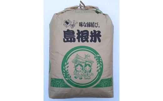 C-275 こしひかり玄米(減農薬米) 30㎏【3pt】