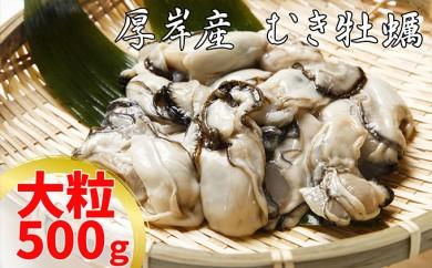 [№5863-0169]厚岸産むき牡蠣(大粒・500g)