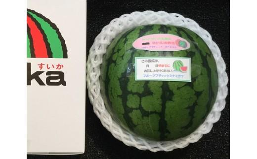 B-159.小玉すいか「ひとりじめ」大玉サイズ1玉(化粧箱入り)
