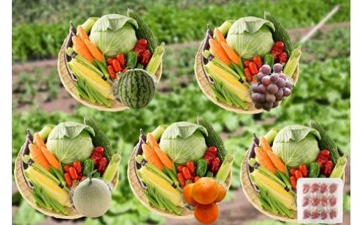 E05 養生市場 旬の野菜とフルーツ定期便