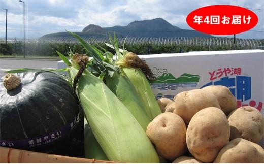 [№5724-0197]旬の野菜セット【アスパラガス・とうもろこし・カボチャ・じゃがいも】