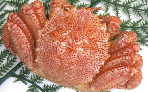 [№5890-0230]北海道オホーツク前浜産ボイル毛蟹(冷凍)600g
