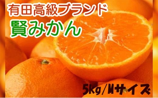 [№5745-0869]有田みかんのブランド「賢みかん」5kg(Mサイズ・赤秀)