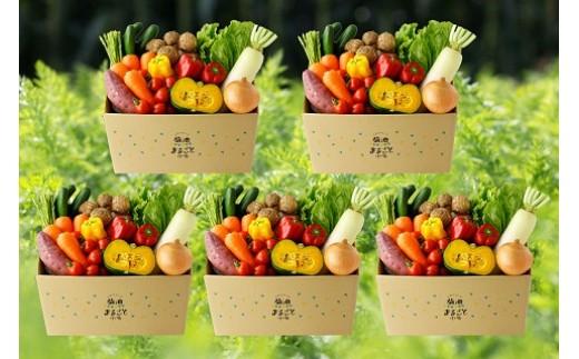 D04 メロンドーム野菜定期便