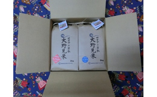 【四万十源流育ち】特栽大野見米2kg×2袋セット(白米)