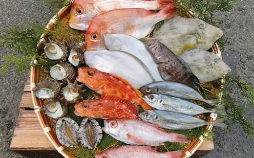 423.浜田の旬のおすすめセット(鮮魚)