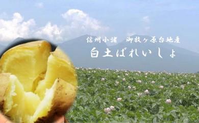 [№5915-0278]御牧ヶ原台地産 白土ばれいしょ(男爵)約10kg