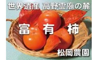 太陽の光をたっぷり浴びた松岡農園の富有柿赤秀2L 14個